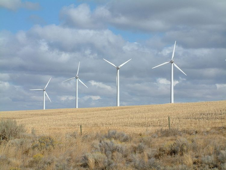 Will Wind Energy Survive 2012?