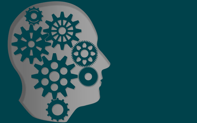 为什么智力从教育中失踪?