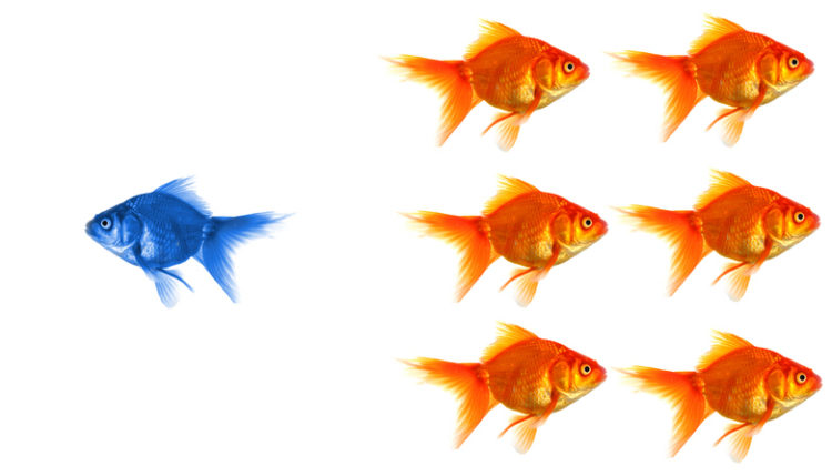 """Want to Innovate? Science Says, """"Be A Nonconformist!"""""""
