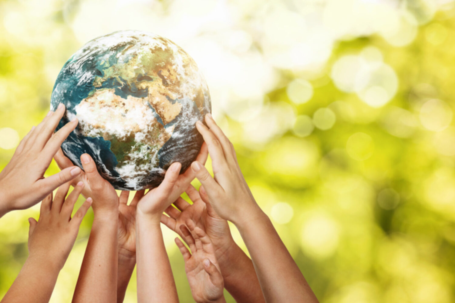 If 4th-graders Can Achieve World Peace, You Can Conquer Uncertainty. Here's How.