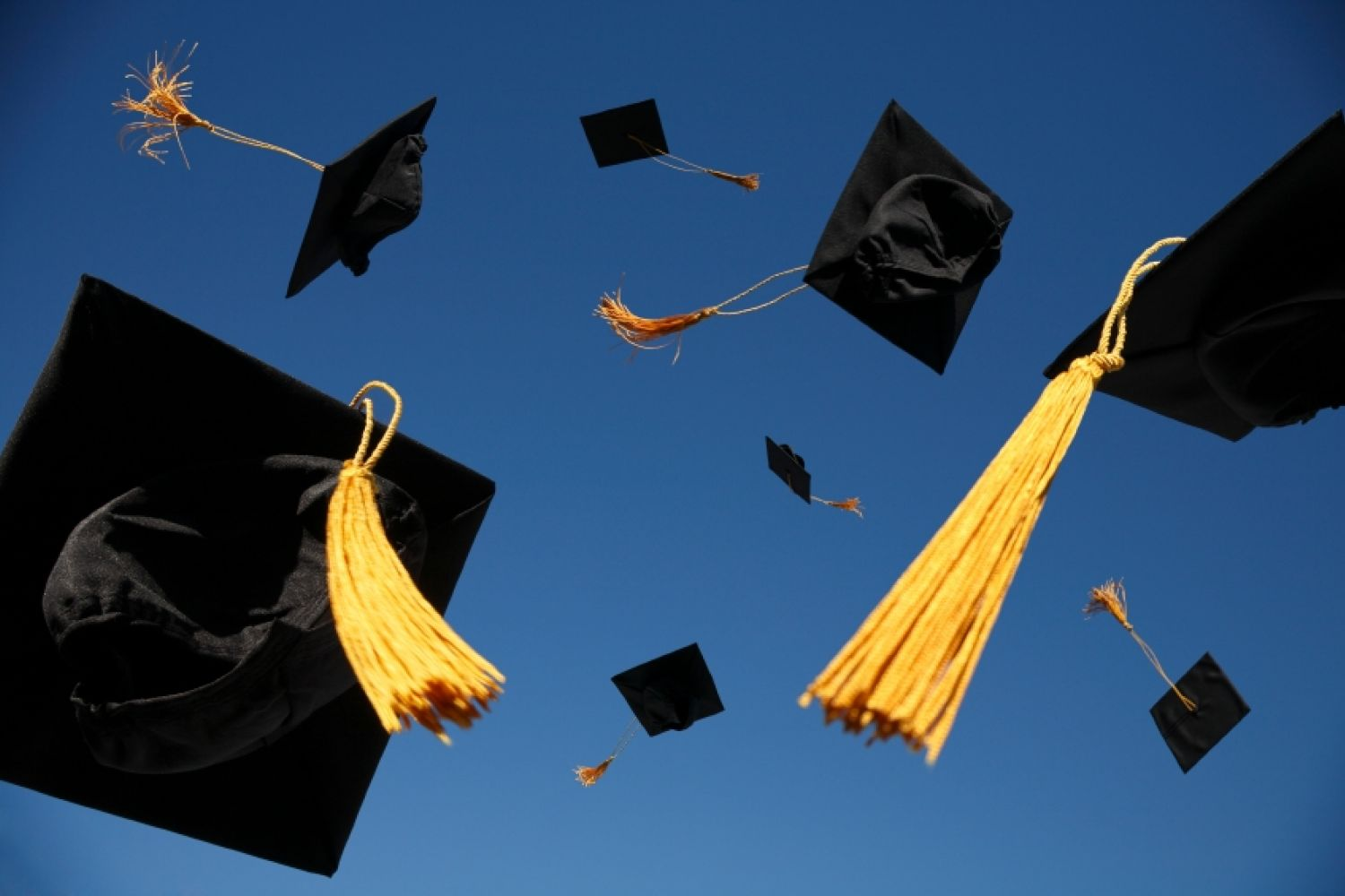 Why You Usually Shouldn't Work at Non-profits Straight after Graduation
