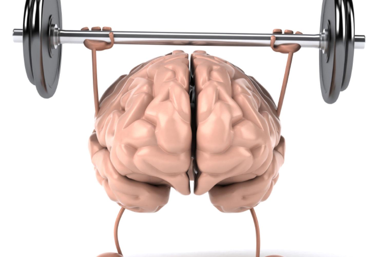 新的认知培训研究涉及批评者