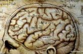 Image for The Myth of the Myth of The Right Brain Difference: And Why It Matters