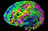 Image for Personal Brain Management: Ready for Prime Time?