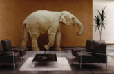 Image for Elephants in the Room of Creativity and Innovation Talk