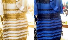 Image for Lessons from the Dress: the Fundamental Ambiguity of Visual Perception