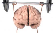 用于新认知培训研究的图像占据批评者