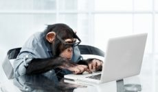 Image for The Infinite Monkey Theorem