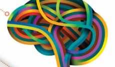 Image for Top 15 Insights About Neuroplasticity, Cognition, Emotions and Learning. Surprised?