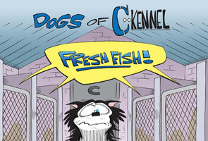 Dogs of C-Kennel: Fresh Fish