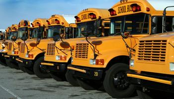 Navigating The School Bus