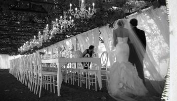 Cellphone Camera Wedding Photos