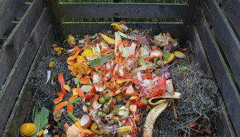 Making The Most Of Your Compost