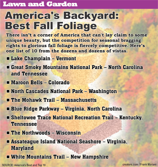 Fall Lawn And Garden Info 1