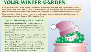 Fall Lawn And Garden Info 3