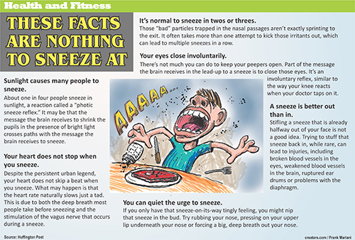 Health Info 2