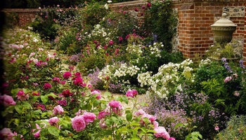 British Gardens