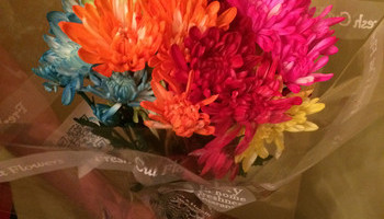 Keep Cut Flowers Fresh And Lovely