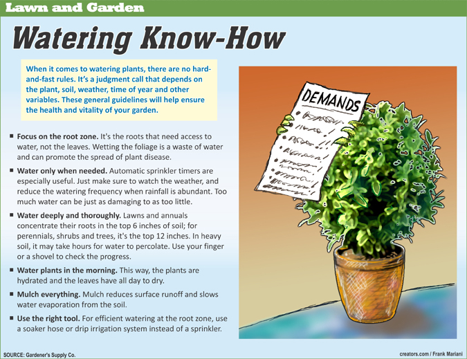 Spring Lawn And Garden Info 2