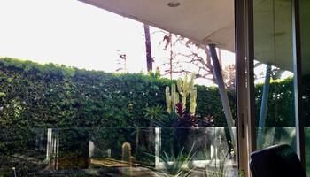 Zen Gardening 101