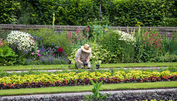 Secrets Of A Cheapskate Gardener