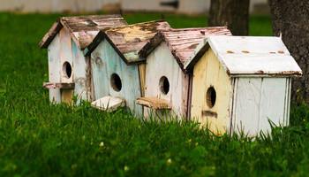 Creating A Habitat