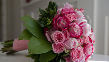 Frugal Flowers
