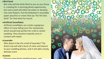 Wedding Bells Info 2