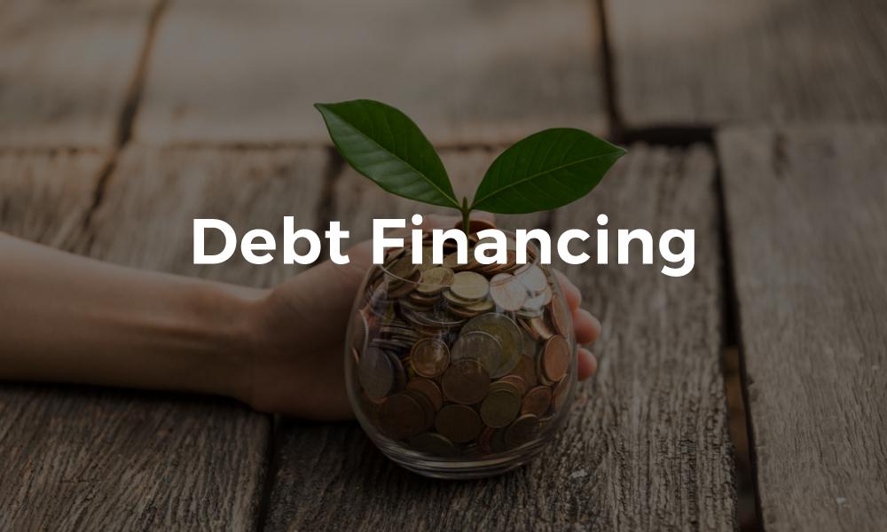 Debt Financing Guide