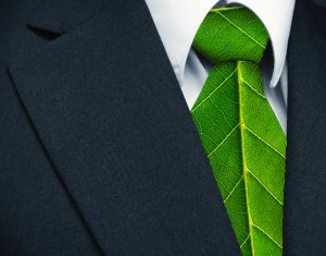 Four Steps to Starting a Green Business