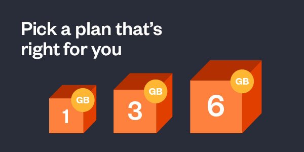 1GB, 3GB, and 6GB Plans