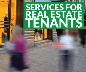 Real Estate Tenant Services - Analysis and Advisory Consulting
