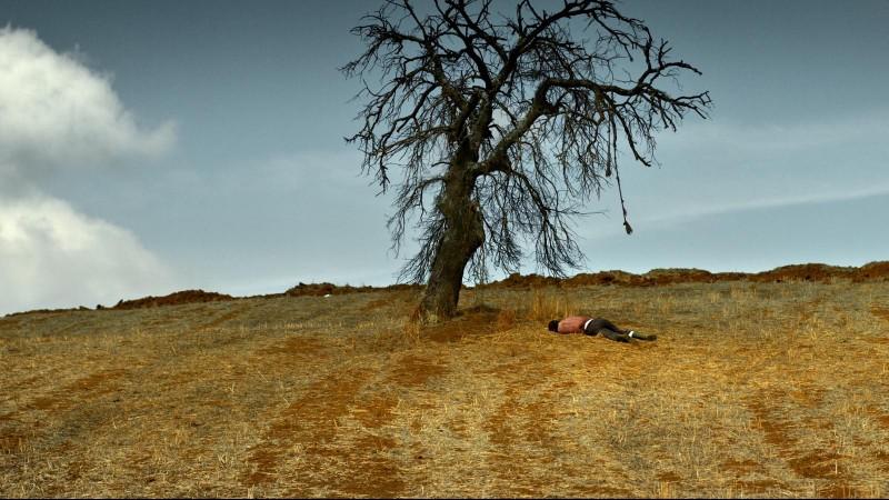Nuri Bilge Ceylan's The Wild Pear Tree