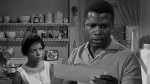Traces of Autobiography in A Raisin in the Sun