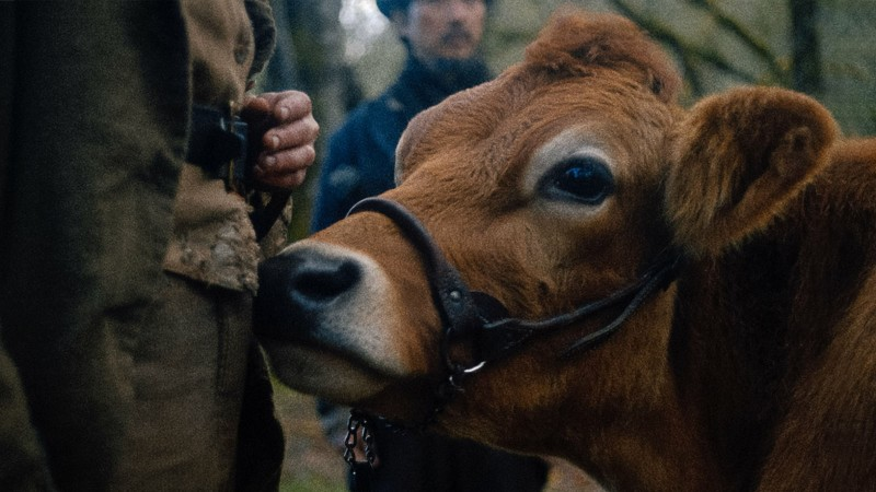 First Cow Leads the Gotham Awards Nominations