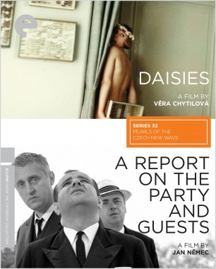 A Report on the Party and Guests