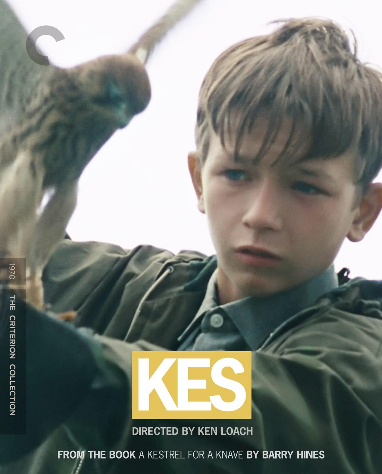 a kestrel for a knave movie
