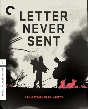 Letter Never Sent