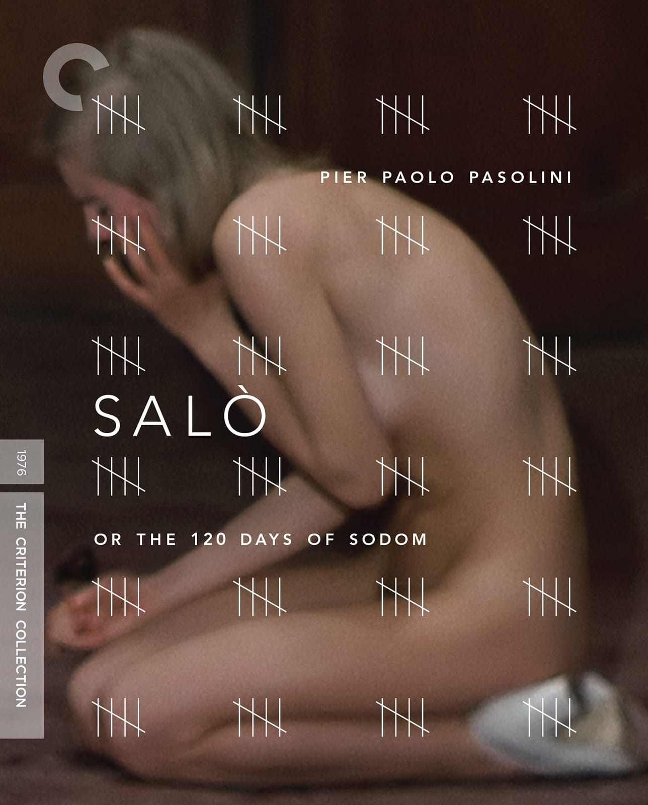 Image result for salo criterion dvd