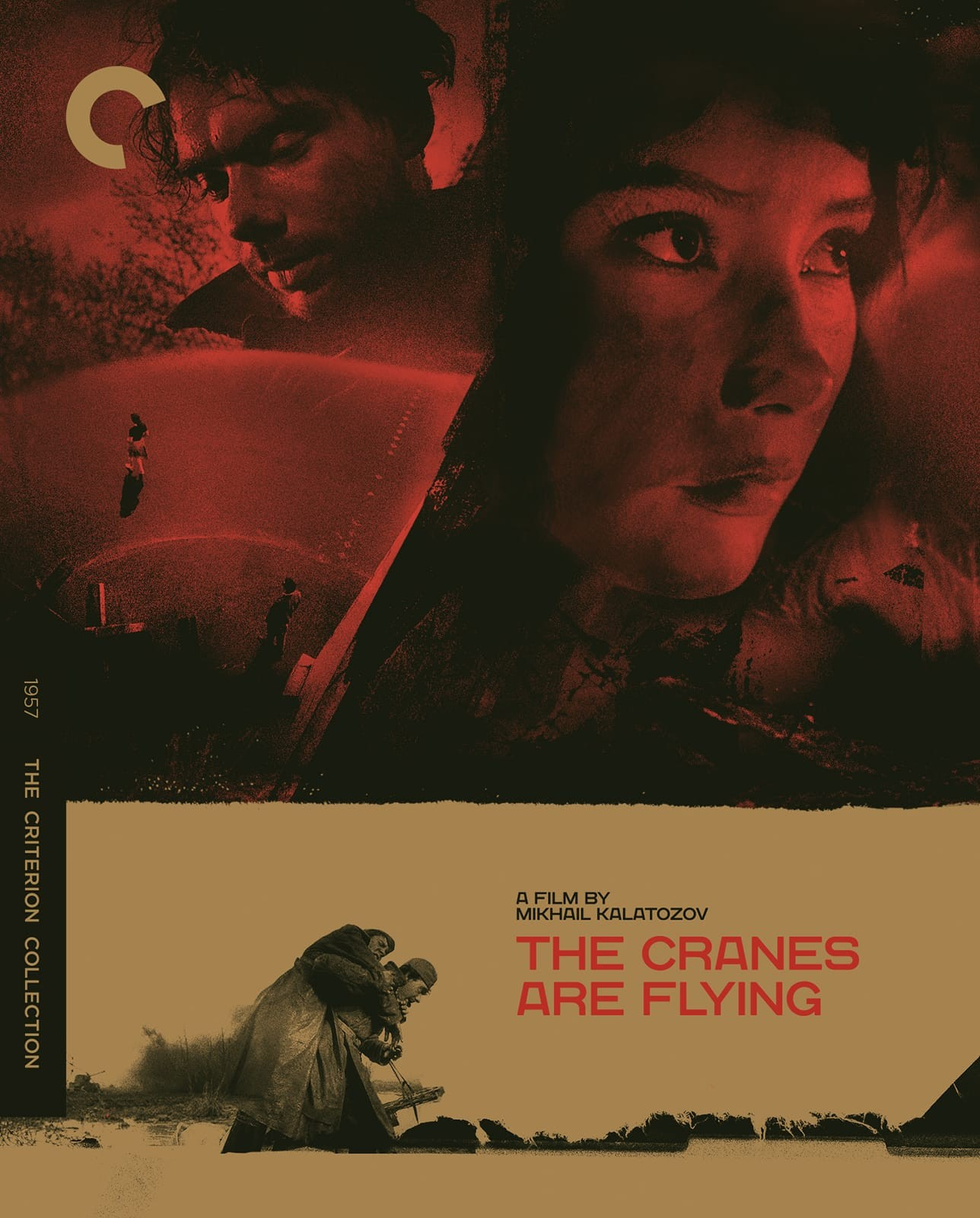 Image result for the cranes are flying criterion