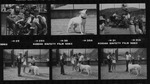 Film_strip_2_thumbnail