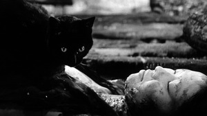 Kuroneko: The Mark of the Cat