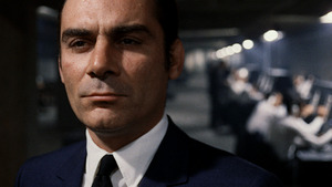 Investigation of a Citizen Above Suspicion: The Long Harm of the Law
