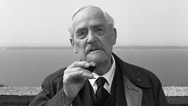 """Wild Strawberries: """"Where Is the Friend I Seek?"""" 