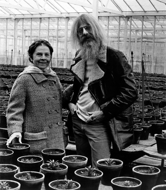 Hal Ashby Directing Harold and Maude