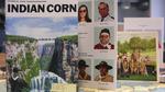 Mk_004_corn_digi_card_thumbnail