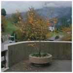 Grindelwald_-_jungfrau-5_thumbnail