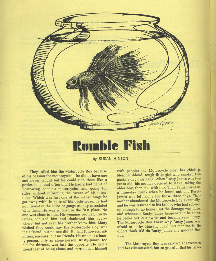 10 things i learned rumble fish from the current the for Rumble fish novel