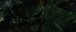 Untitled-20jpg_thumbnail