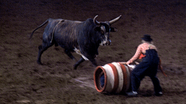 An Honest Bull Session with Carroll Ballard